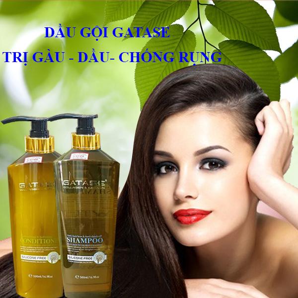 Dầu gội trị gàu trị dầu và chống rụng tóc gatase